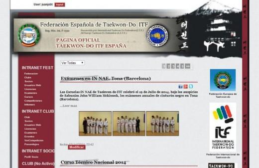 antigua fest diseño web