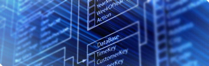 estructura database wordpress